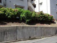 パークハイツ戸塚擁壁漏水1